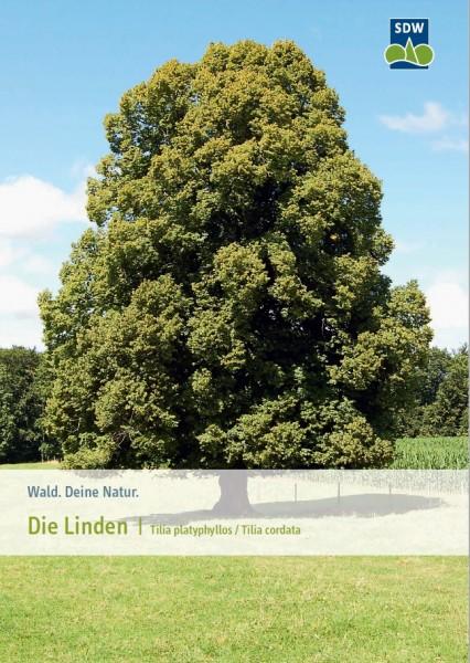 Die Linden