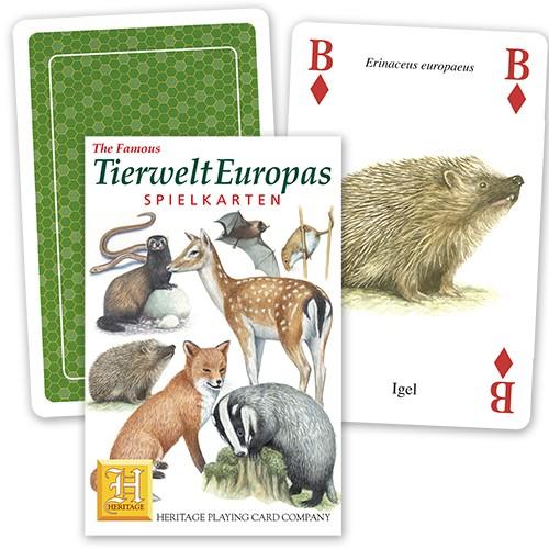Spielkarten Tierwelt