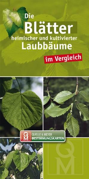 """Bestimmungskarte """"Laubbäume"""""""