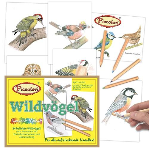 Malset Vögel