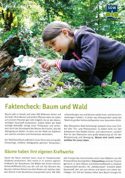 Faktencheck: Baum und Wald